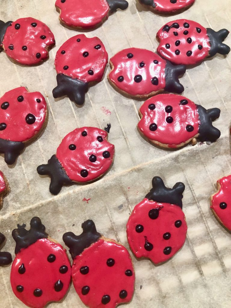 Ladybug-make-a-wish...inthemaking