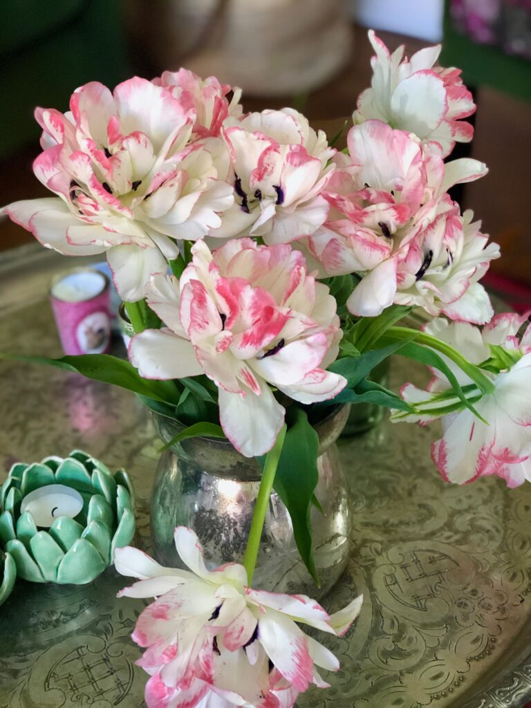 Passionately-living-with-flowers-plants-littletulips